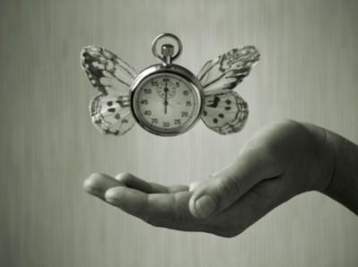 time-flies-400x298